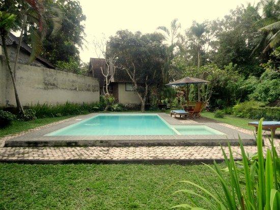 Abangan Bungalow : Pool