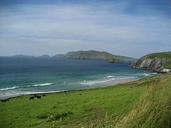 Slea Head Farm B & B: the view