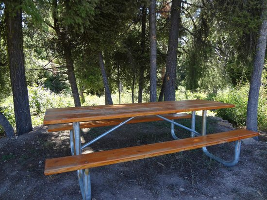 Idaho City Backcountry Yurts: Stargaze Yurt picnic table