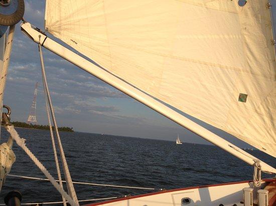 Schooner Woodwind: Sails