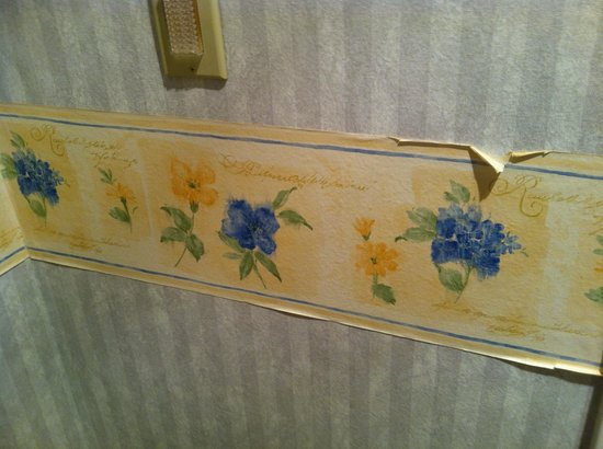 Quality Inn: wall paper in bathroom