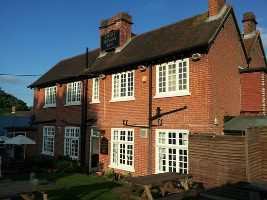 The Trusty Servant: Pub from the rear beer garden