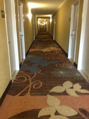 Clarion Inn & Suites - Fairgrounds: Hall