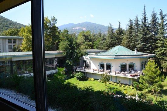 NG Sapanca Wellness & Convention: Вид из окна