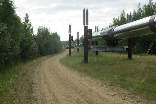 Fairbanks Princess Riverside Lodge: Oil Pipeline that passes near Fairbanks