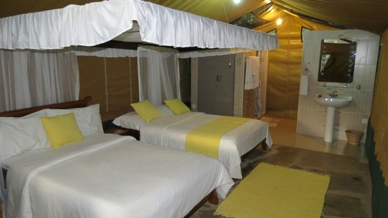 "Bofa Beach Resort : Inside the ""tent"", typical room"