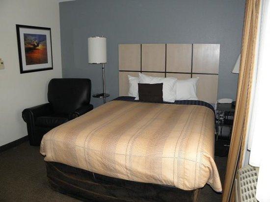 Candlewood Suites Detroit - Troy : Room 223
