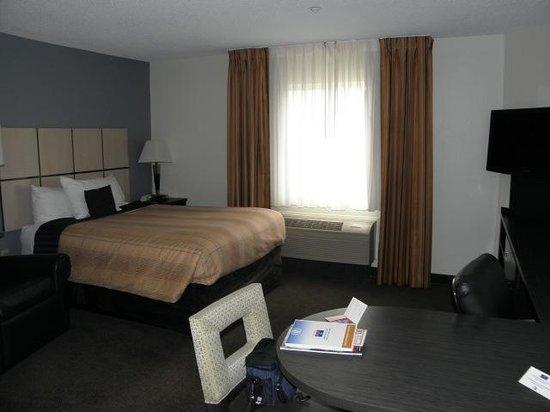 Candlewood Suites Detroit - Troy : #223