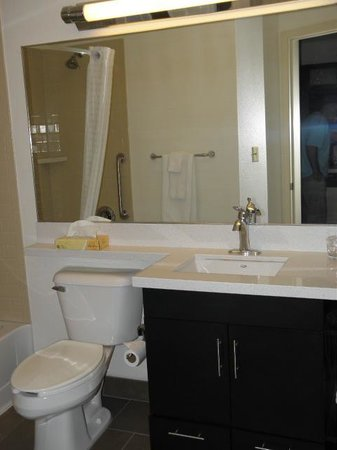 Candlewood Suites Detroit - Troy : renovated bathroom