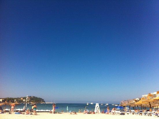 Viva Rey Don Jaime Hotel: The beach