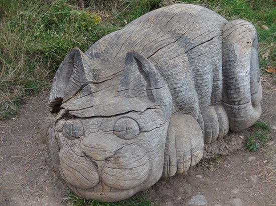 Happy Valley Gardens: The Cheshire Cat