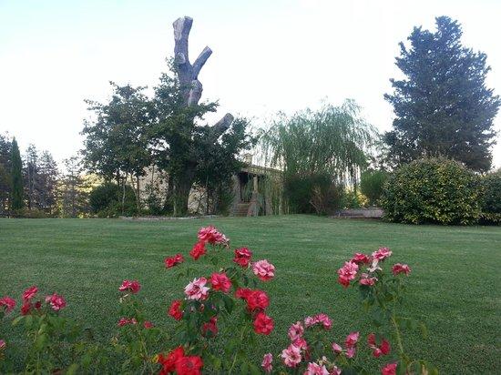 Podere Casanuova: Gardens