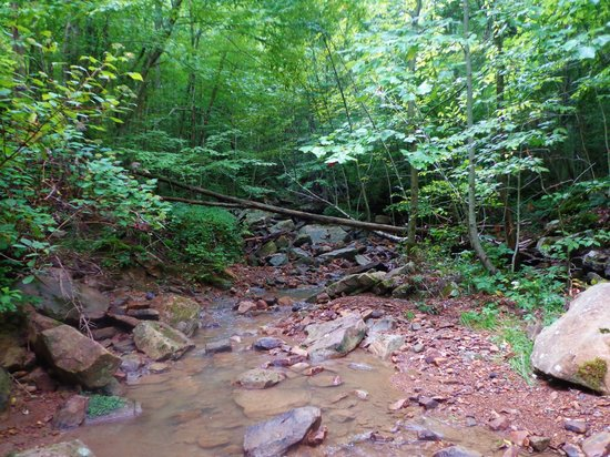 Oak Ridge, TN: lots of creeks