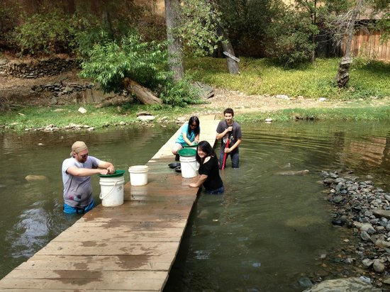 Gold Prospecting Adventures: Digging Gold out of the Creek