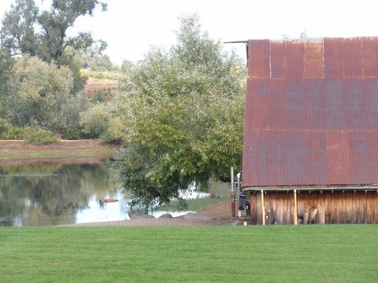 Deaver Vineyards Winery : And the old barn