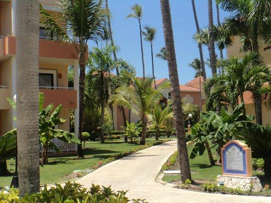Luxury Bahia Principe Esmeralda: Grounds