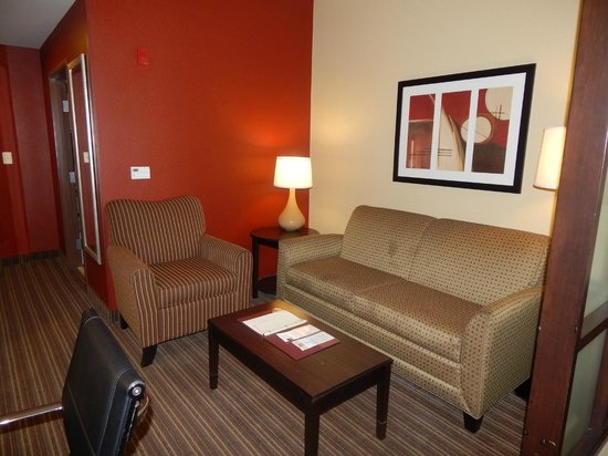 Comfort Suites West of the Ashley: living area