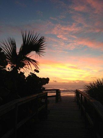 写真Coconut Palms Beach Resort 1枚