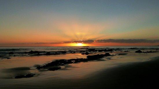 Mike & Jennys Kaka Point Accommodation: Sunrise