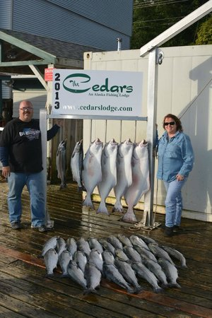 The Cedars Lodge: Our Haul (One Day of Fishing)