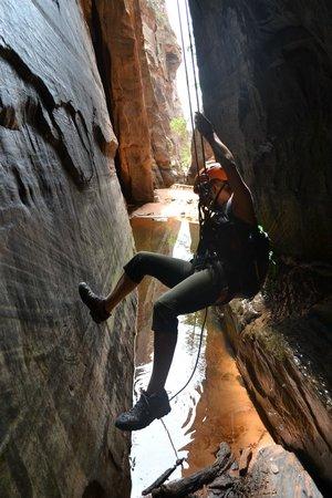 Zion Mountaineering School: last rappel