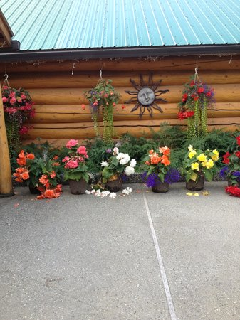 A Taste of Alaska Lodge: Front of the main lodge