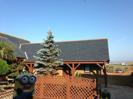 Chale Bay Farm: Sweet little garden area