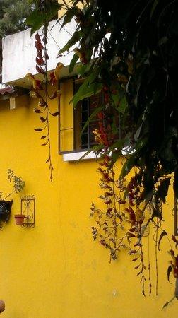 Bed and Breakfast Ajb'e : giardino