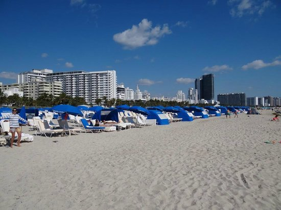 Loews Miami Beach Hotel Playa