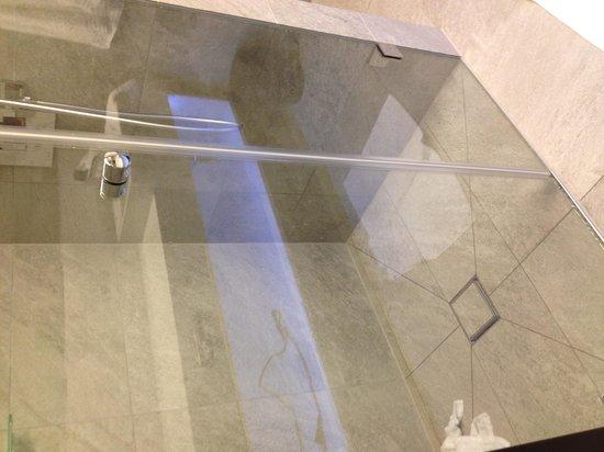 Adlers Hotel: Slimline shower door that leaked