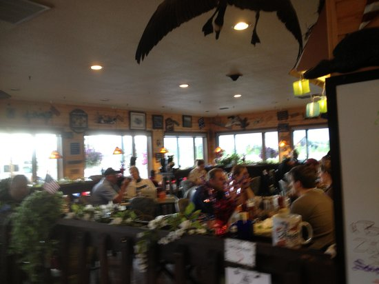Noisy Goose Cafe : Very casual and friendly atmosphere...