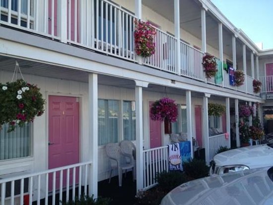 Seaside Colony Motel: Bright and Clean