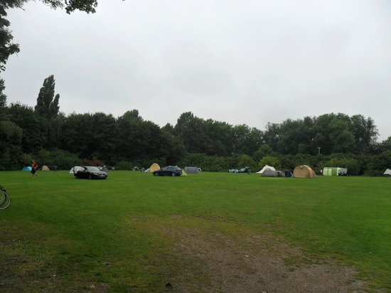 Stadscamping Rotterdam: The tent field