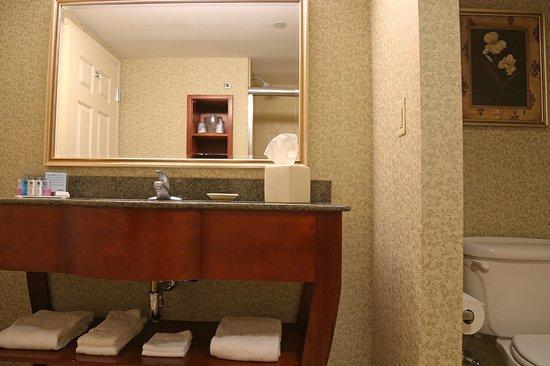 Hampton Inn Easton: King Bathroom with Shower