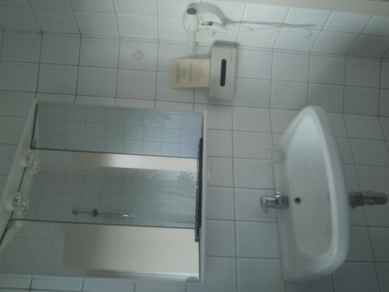 Hotel Les Bruyeres : SDB