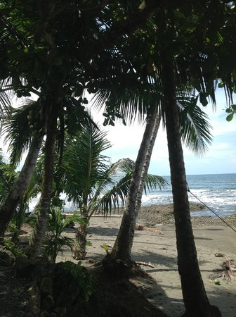 Coral Hill Bungalows: Cahuita Beach