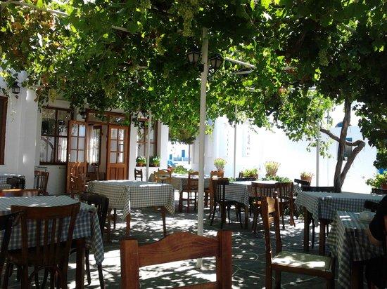 "Hotel Artemon : ""back yard"" restaurant"