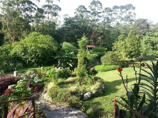 Hotel Dos Rios: Back Garden