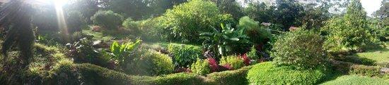 Hotel Dos Rios: Garden, Panoramic photo