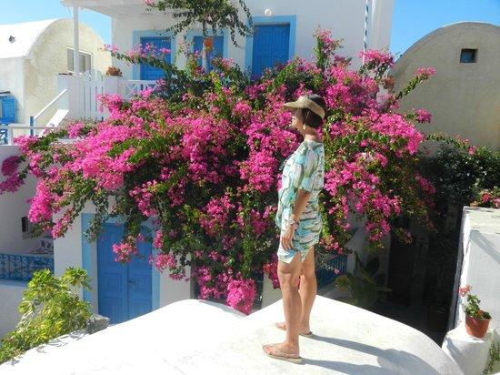 Esperas Santorini: Colors, color and colors!