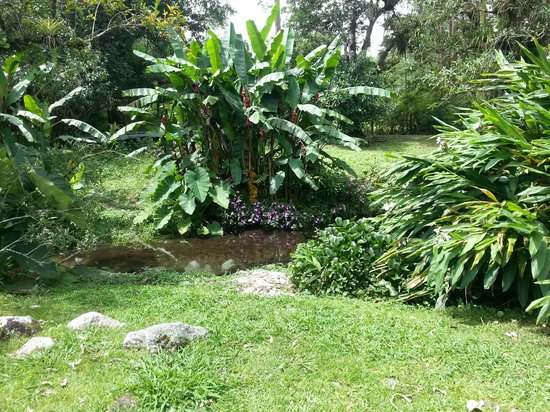 Hotel Dos Rios: Garden1