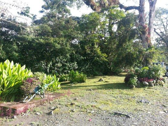 Hotel Dos Rios: Frontside Garden