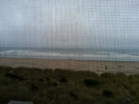 Silver Sands Oceanfront Motel : View through the screen of our room