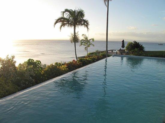 Taveuni Island Resort & Spa: Infinity pool