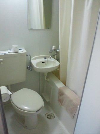 Hotel Fujiyoshi : ユニットバス狭いけど温泉が出る