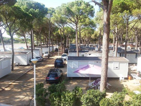 Camping Sandaya Cypsela Resort : Vu les mobiles homes Cypsela