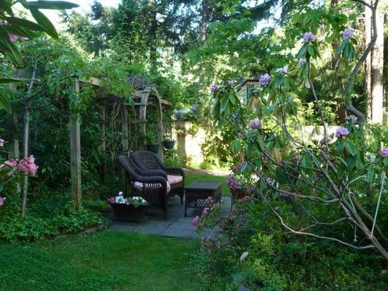 Blue Willow Guest House: Relax and enjoy the garden