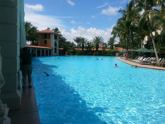 The Biltmore Hotel Miami Coral Gables : Swimming pool, 4x a regular hotel pool