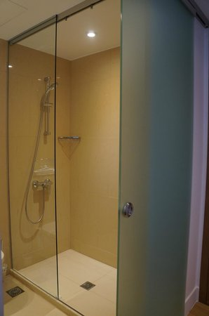 Porto Veneziano Hotel: The shower