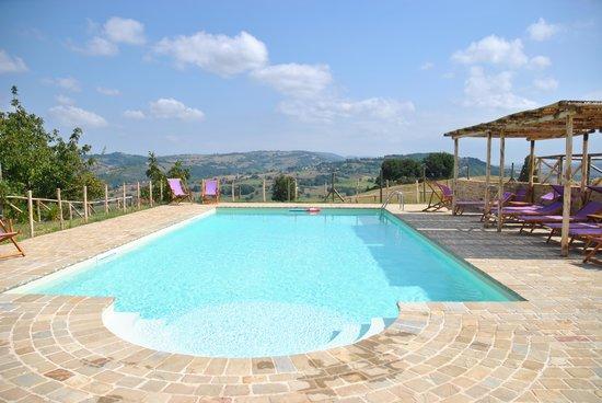 Bio Agriturismo Fattoria Fontegeloni: swimming pool